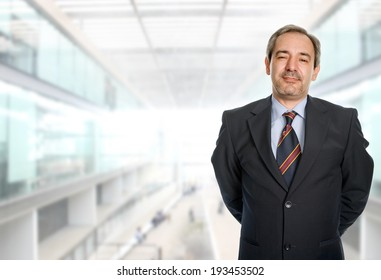 mature business man portrait at the office