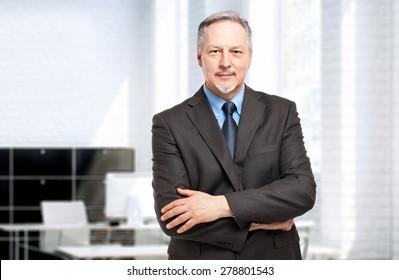 Mature businessman portrait in his office