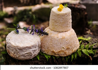 mature cheese selection