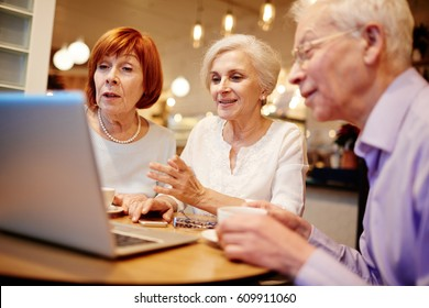 Mature companions sitting in cafe in front of laptop