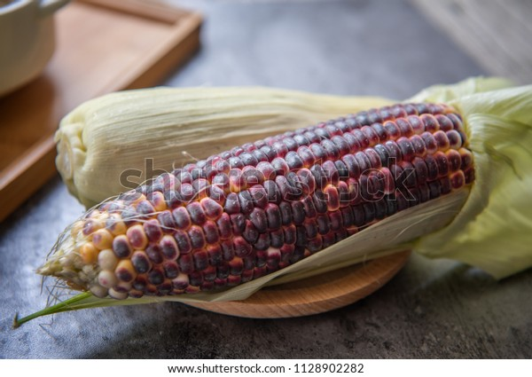 corn-mature-from-seed