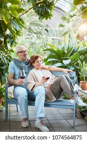 Mature couple with glasses of red wine relaxing on bench in orangery of sanatorium or tourist resort