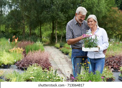 Mature Couple Shopping For Plants At Garden Center