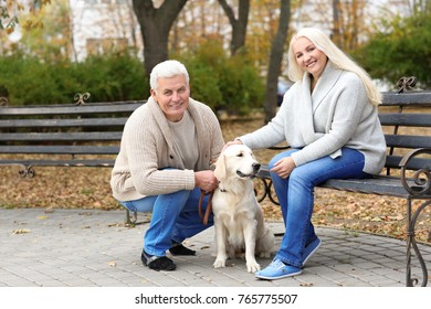 Mature couple with their dog resting in park