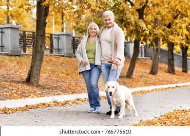 Mature couple walking their dog in park