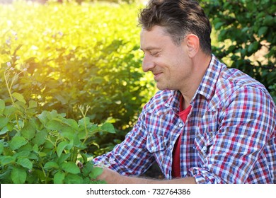 Mature farmer sitting in field with green plants