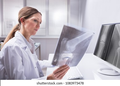 Mature Female Doctor Examining Knee X-ray In Clinic