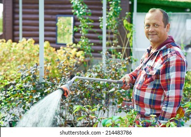 Mature gardener looking at camera with smile while watering plants in the garden