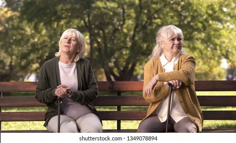Mature ladies sitting separately on bench in park, friends argued and quarreled