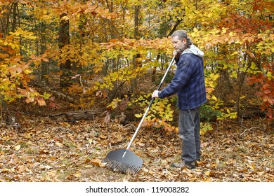 A mature long gray haired man with a beard raking leaves outside on a fall day in the yard