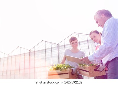 Mature male biochemist discussing with female botanists against clear sky