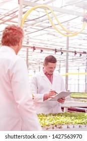 Mature male biochemists amidst seedlings in greenhouse