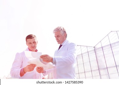 Mature male biochemists discussing over documents against clear sky