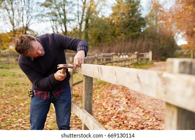 Mature Man Hammering Nail Into Repaired Fence
