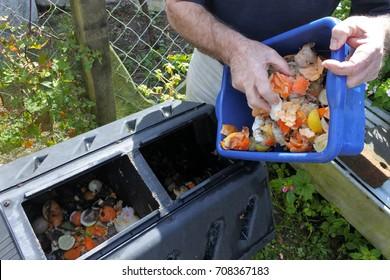Reife Menschen Hände leert ein Behälter voll von Hausnahrungsmittel Abfall, bereit für Kompostierung im Garten. Konzept der stofflichen Verwertung und der Umwelt. Kopienraum