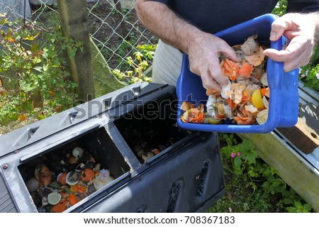 Mature man hands emptying a container full of domestic food waste, ready to be composted in the home garden. Food recycling and environment concept. copy space