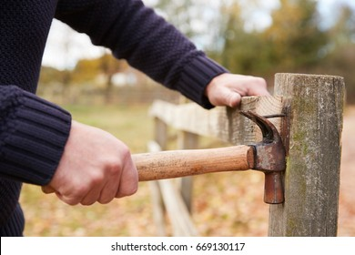 Mature Man Removing Nail From Fence Being Repaired