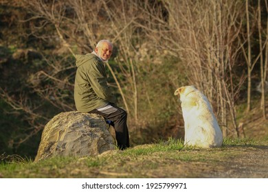 Mature man in sportswear with shepherd dog in the green.