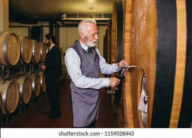 Mature sommelier in winery basement pouring red wine into long-stemmed wineglass.