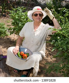 Mature woman harvesting tomatoes and cucumbers in her summer garden.