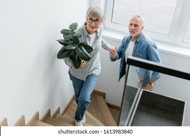 mature woman with plant holding hands with man in new house
