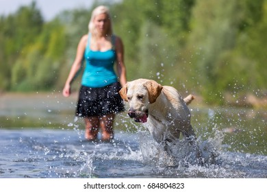 mature woman plays with a labrador retriever in the lake