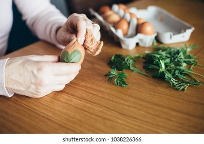 Mature woman preparing easter eggs for natural dying coloring