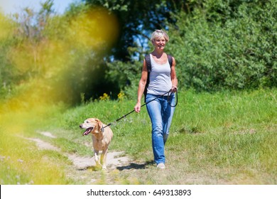 mature woman with rucksack hiking with a dog in a summer landscape