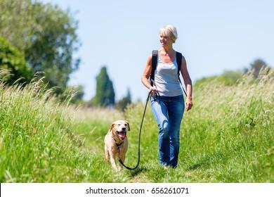 夏の風景の中で犬と一緒にハイキングするリュックサックを持つ成熟した女性