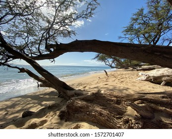 Maui Beach at Lahaina Hawaii