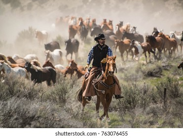 May 1, 2016 Craig, CO: Cowboy with black hat and sorrel horse leading horse herd at a gallop on annual Sombrero Ranch horse drive