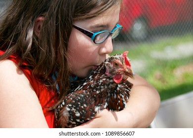 May 11, 2013 - Philadelphia, PA, USA: A girl kisses a chicken at the W. B. Saul High School for Agricultural Sciences in Philadelphia, Pennsylvania.
