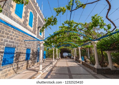 May 15, 2017. The vine garden patio at the Greek Orthodox Church of the Seven Apostles near Capernaum, Israel, Holy and, Middle East.