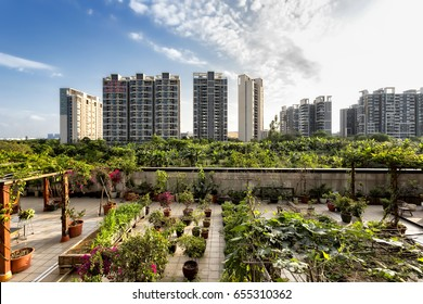 May 2017 - Guangzhou, China. View of an urban garden in Panyu district.