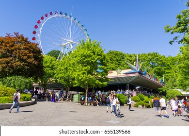 May 25, 2017  Flower garden at Everland, YoungIn city, South Korea