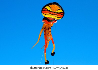 May 26, 2013 - Wildwood, NJ, USA: An octopus-shaped kite soars high above the beach at the Wildwoods International Kite Festival.