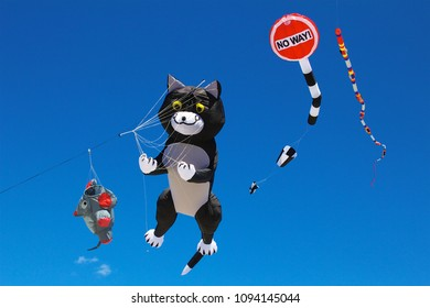 May 26, 2013 - Wildwood, NJ, USA: A giant cat-shaped show kite flies high in the sky at the Wildwoods International Kite Festival.