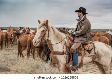 May 6, 2017 Craig, CO: Cowboy wrangler ranch hand with brown coat and black cowboy hat riding a horse watching over horse herd on prairie