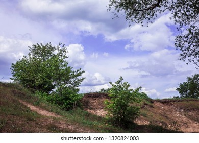 May landscape. Morning. In the lilac sky fluffy white clouds. Bright young zeny trees. Yellow dandelions in the grass. - Shutterstock ID 1320824003