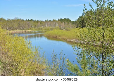 May on the forest river. Spring river landscape in the national Park of Central Russia.