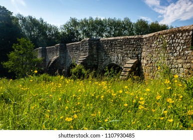 A May walk along the river medway in Kent from Teston Bridge through west Farleigh