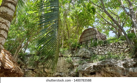 maya dwelling in the jungle mexico, maya's institution, house made of palm trees, unfinished original
