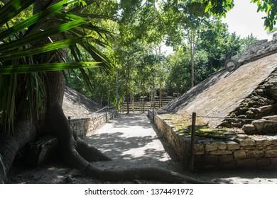 Maya Ruins of Coba in Mexico