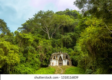 Mayan Ruin with long stairs in Palenque forest, Mexico