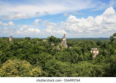 Mayan ruins in the jungle of Tikal in Guatemala.
