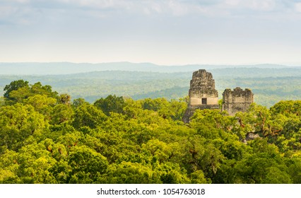 Mayan ruins rise above the jungle in the famous Tikal National Park, Guatemala