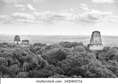 Mayan ruins rise above the jungle in the famous Tikal National Park, Guatemala in stunning black and white