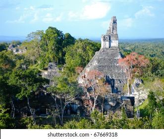 Mayan Ruins of Tikal in Guatemala