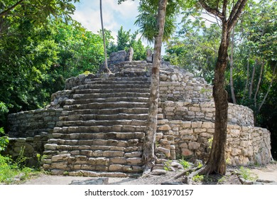 Mayan temple ruins dated from Late Post-Classic period (1400-1550 A. D.) with round floor plan and the platform substructure from the Classic period (300-900 A. D.) in Quintana Roo, Mexico.