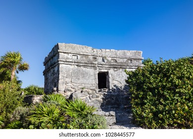 Mayan temple ruins surrounded by plush tropical vegetation against blue sky in Riviera Maya, Playa del Carmen, Mexico.